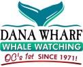 DW_WW_logo_clr-300x241