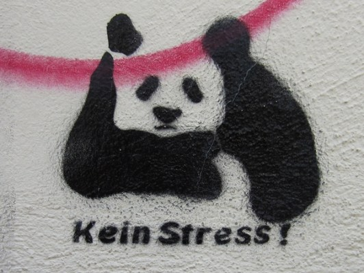 StreetArt_Mainz_Neustadt Panda