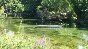 Boat ride on Lake Ohrid's springs (3)