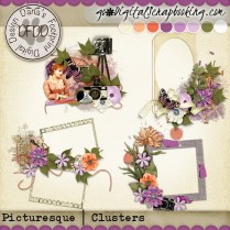 dfdd_Picturesque_clusters