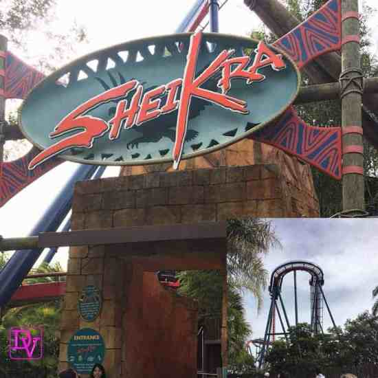 14 Things You Need To Know About Busch Gardens Tampa