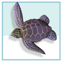 Sea Turtle Baby 2 | Dnay Design