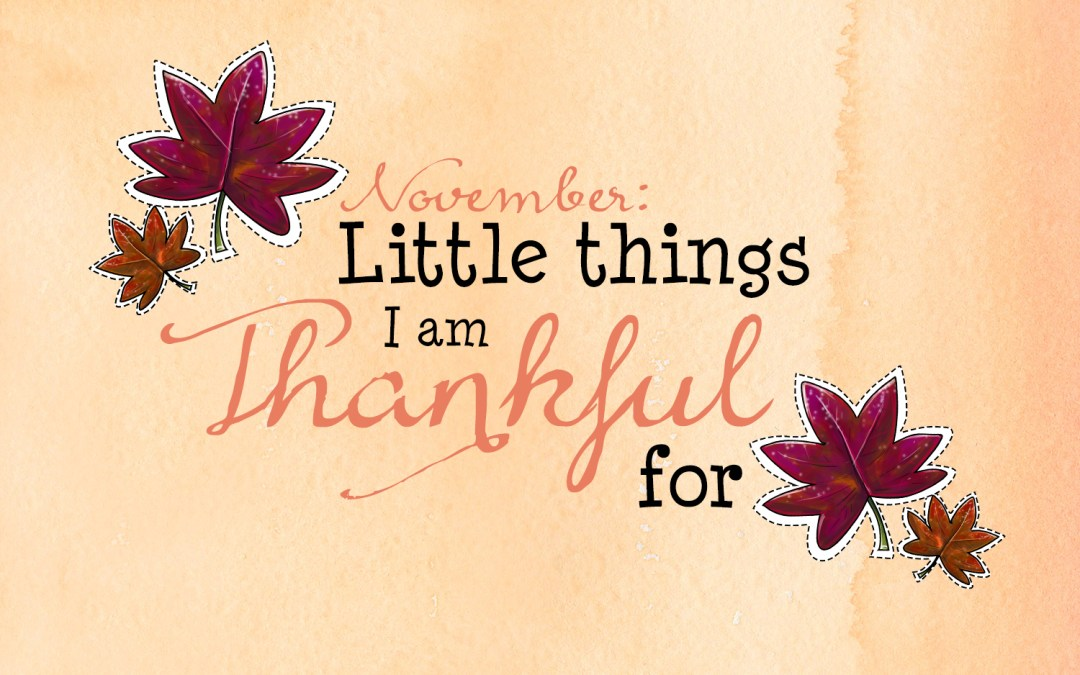 November: little things I am thankful for
