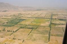 fields near Kandahar