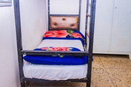 danbo_boys_hostel