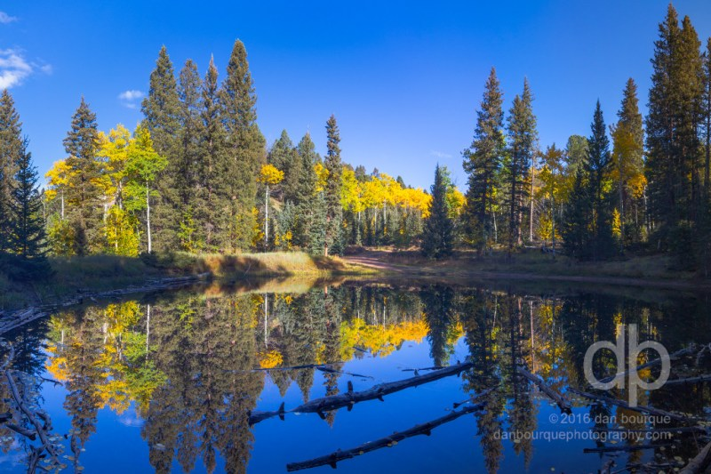 Autumn at Lost Pond landscape photo by Dan Bourque