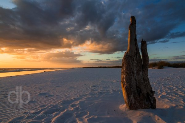 Beach Bum at Sunset landscape photo by Dan Bourque