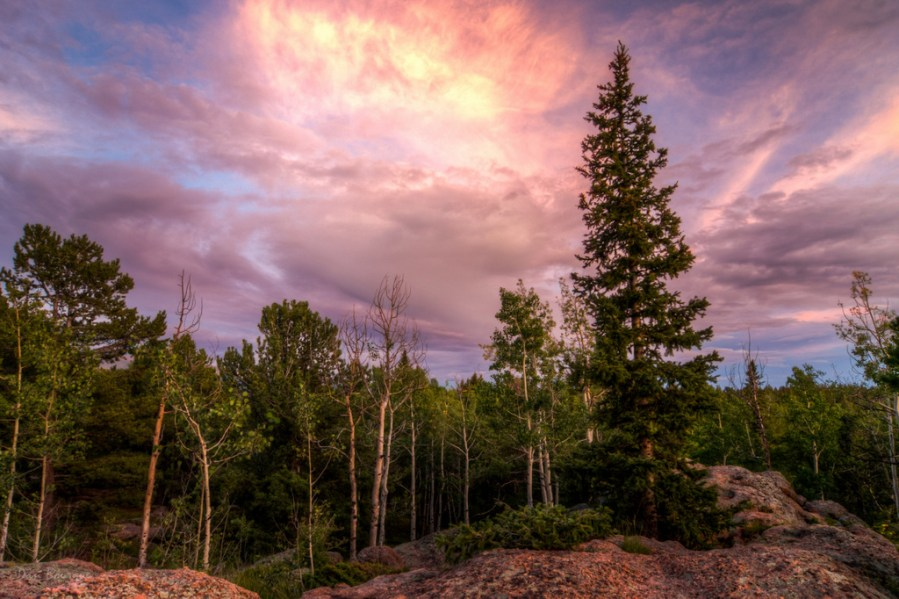 Cloudburst over the Forest landscape photo of Mueller State Park Colorado by Dan Bourque