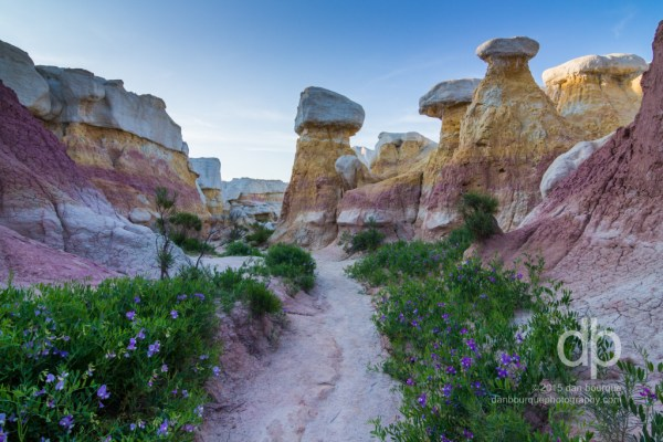 Paint Mines landscape photo by Dan Bourque