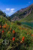 Red Flowers on Emerald Lake landscape photo by Dan Bourque