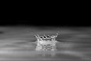 Watery Crown water drop photo by Dan Bourque
