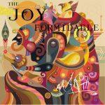 The joy formidable