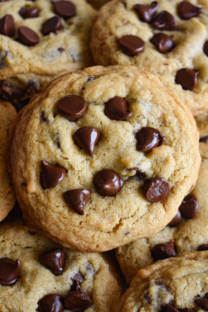 The Best Chocolate Chip Cookies by Dance Around the Kitchen - WEEKEND POTLUCK 481