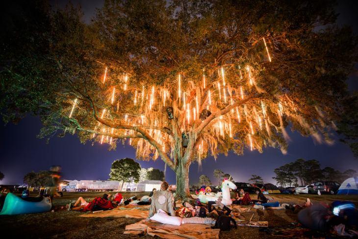 Okeechobee 2017 The Living Tree