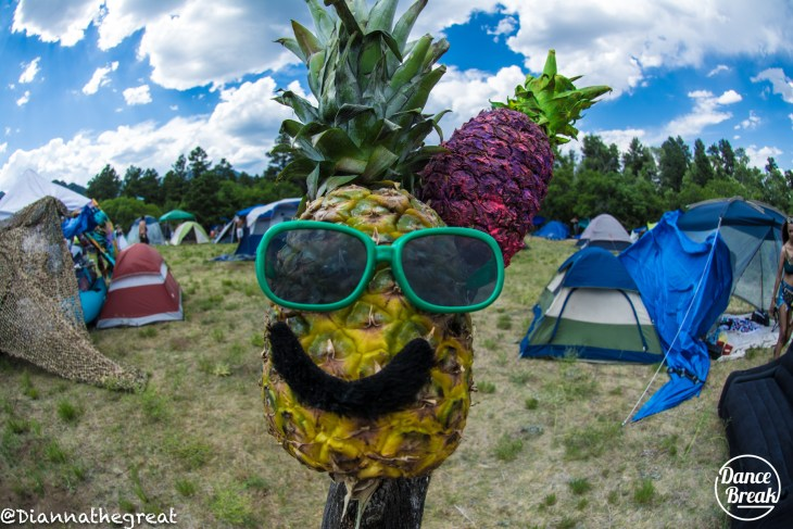 Alex the Pineapple at Sonic Bloom 2018