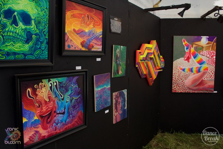 Paintings at Sonic Bloom 2019