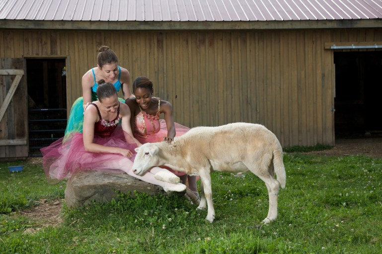 Three of Cynthia King's students pose outside a barn, with a goat. They are wearing King's vegan ballet slippers, and the goat nuzzles one dancer's ankles.
