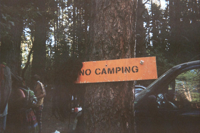 Mullet Wig Adorns the 'No Camping' Sign