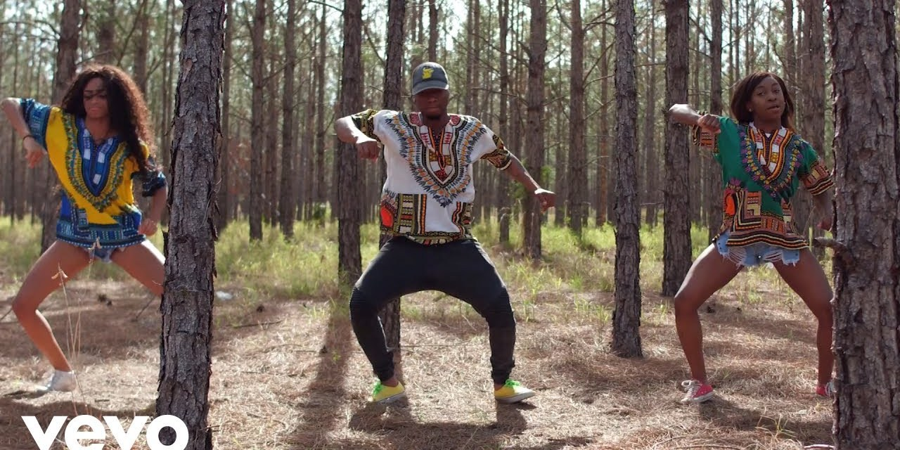 Shawn Storm – Afro Wine Official Video