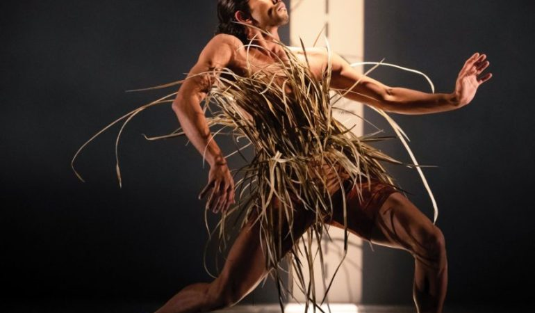 Bangarra Dance Theatre's Tyrel Dulvarie in Frances Rings' Unaipon Photo: Dan Boud