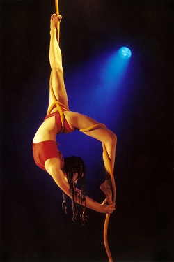 Shiva Shakti Daksha Sheth Dance Company