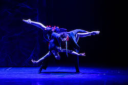 Elise May in 'Behind Closed Doors'. Photo courtesy of Expressions Dance Company.