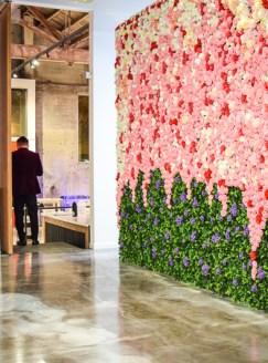 Vue rose wall