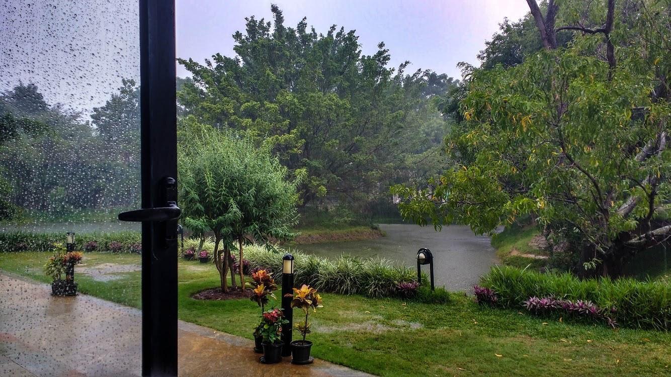 Raindrop_pritha
