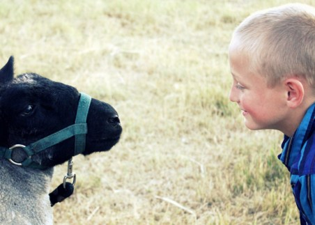 Hayden with his fair lamb Tarzan