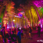 Electric Forest postpones to August amid evolving COVID-19 considerationsElectric Forest Credit Anthony Norkus