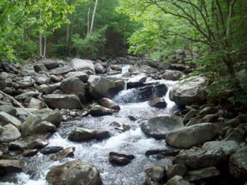 smoky-mountains-stream-1