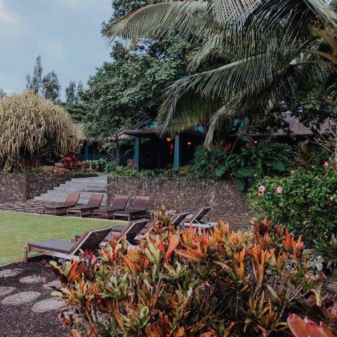 Dancing for Donuts | 7 Favorite Moments from the We Are Haumea Retreat in Maui