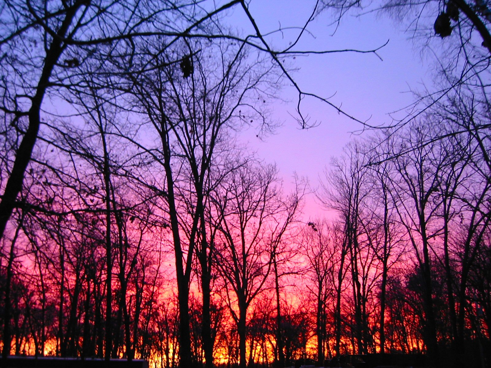 2008-11-25-sunrise-6