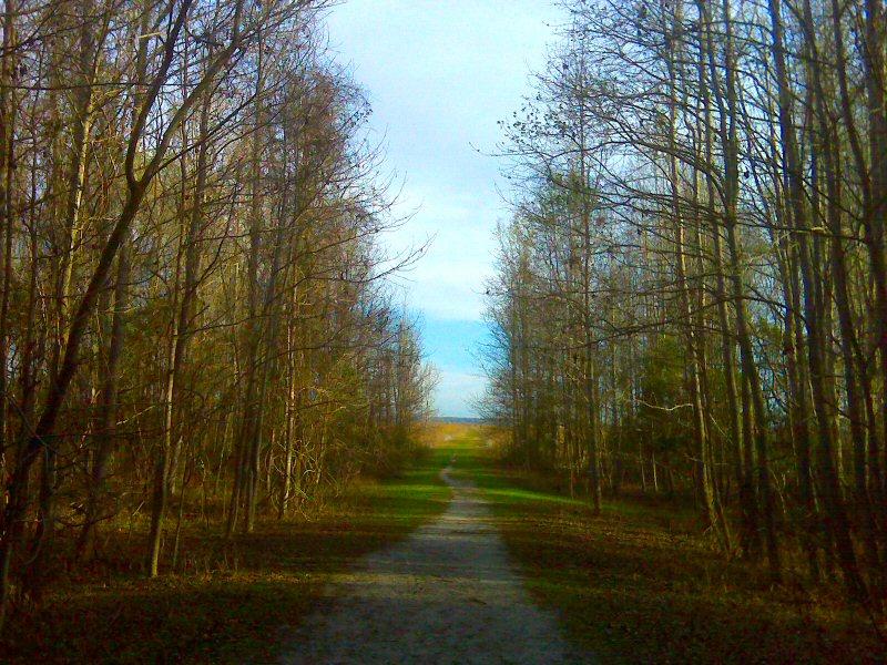 Path to the prairie