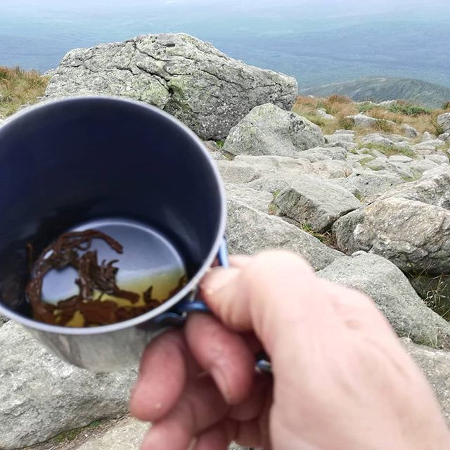"""On the trail, tea is best served """"Grandpa style""""--filtered with your teeth.ON Mt Clay after summiting Mt. Washington. The tea is Jade Rouge, a Taiwanese black from Té Company in NYC.#chocolatier #appalachiantrail #mountwashington #tea"""