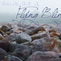 The Delicate Art of Flying Blind