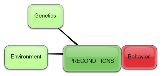 bubblus_preconditions-behavior