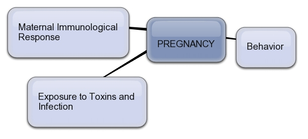Health Influences in Pregnancy