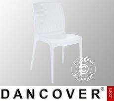 Chair, Boheme, White, 6 pcs.