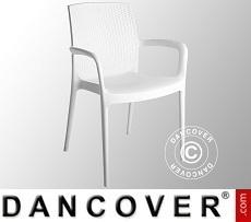 Chair with armrests, Boheme, White 6 pcs.