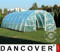 Polytunnel Greenhouse 3x8.4x1.9 m, 25.2 m², Transparent