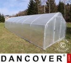 Invernadero de policarbonato, Duo 4m², 2x2m, Plateado