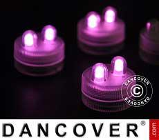 LED Floralytes (20 pezzi) Ø 3cm, rosa