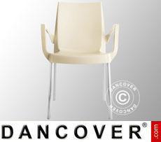 Sedia con braccioli, Boulevard, Avorio, 6 pz.