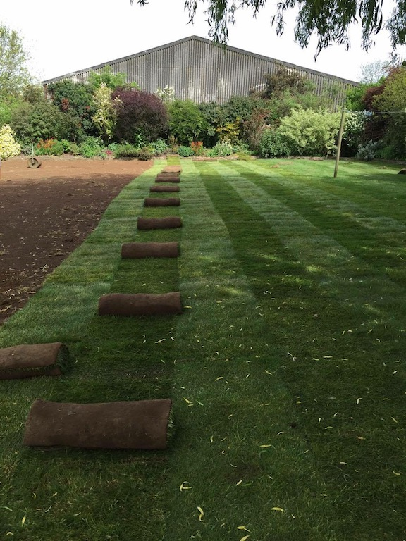 Laying turf on a large lawn