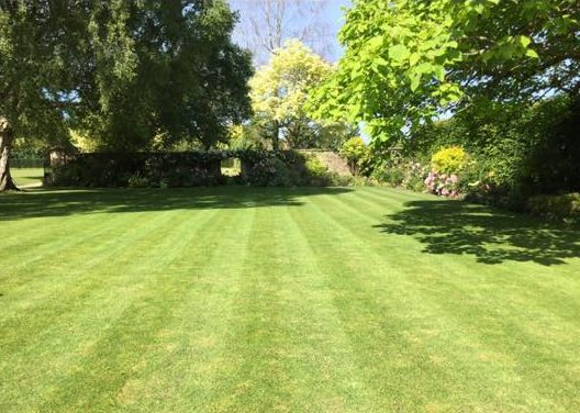 Well maintained lawn in Wiltshire