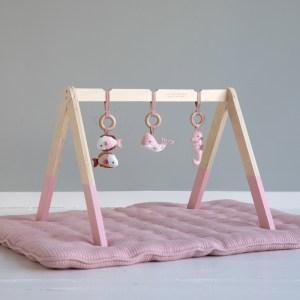 Centru de activitati bebelusi