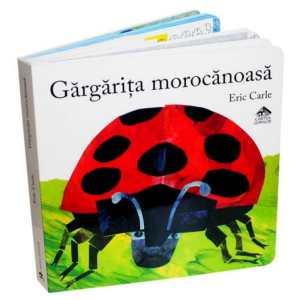 Gargarita morocanoasa, carte de copii