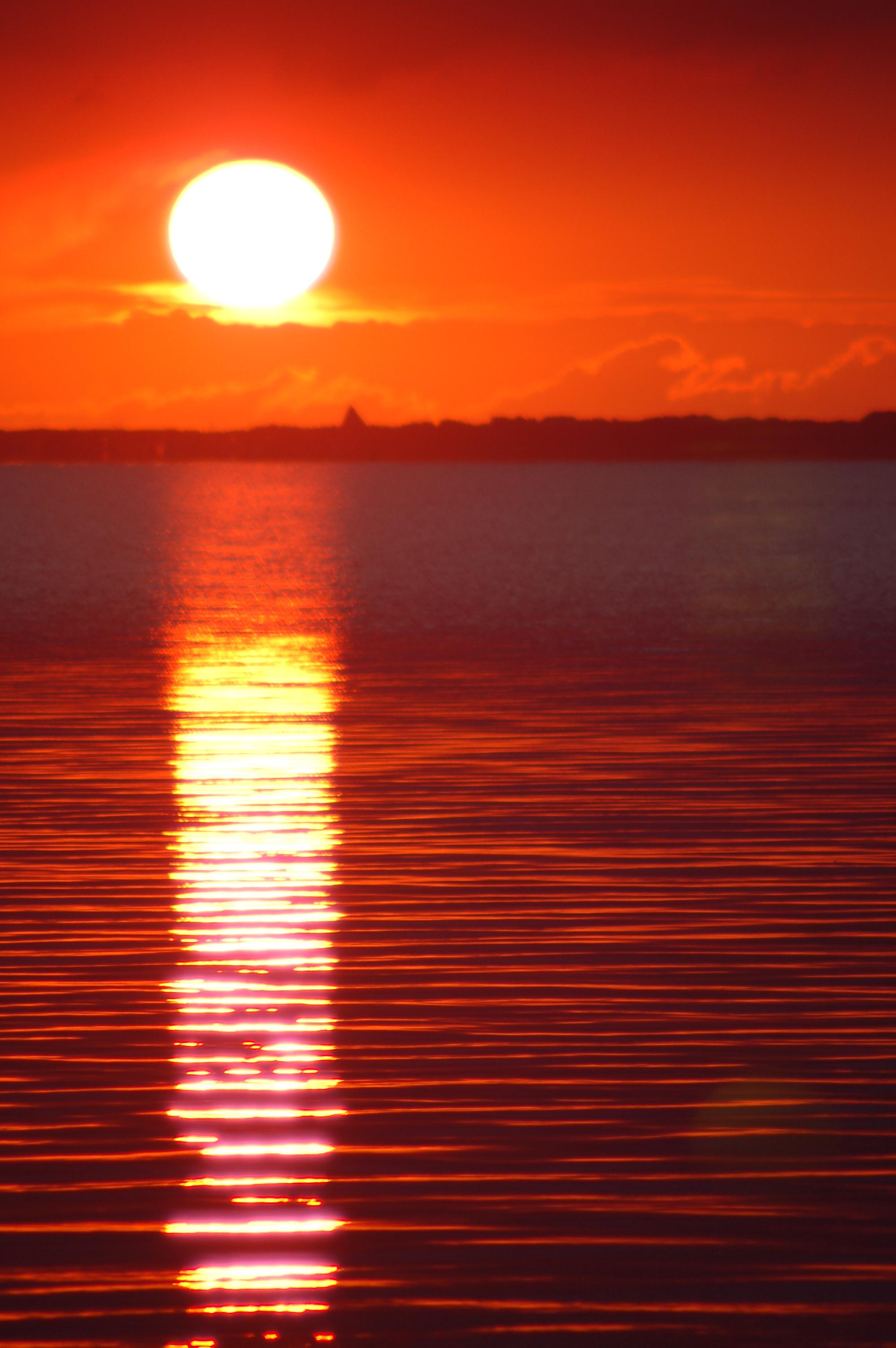 Sonnenuntergang  dandelionia
