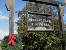 Christmas Tree Farm in Howardsville, VA
